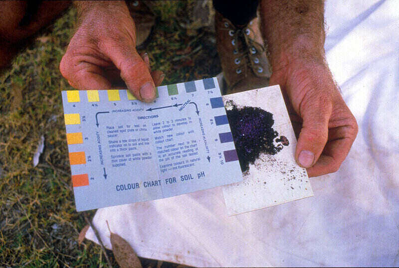 soil test showing a color chart for soil pH