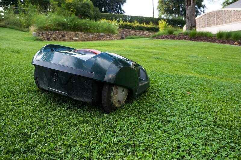 robotic lawn mower sitting on a freshly cut lawn