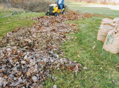 Person on a riding mower mulching leaves on a large area of grass